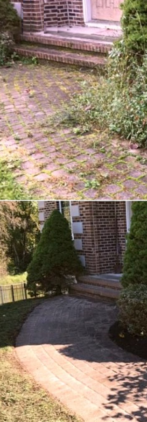 Landscape Repair & Restoration