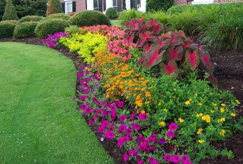 Flower Displays & Landscape Services