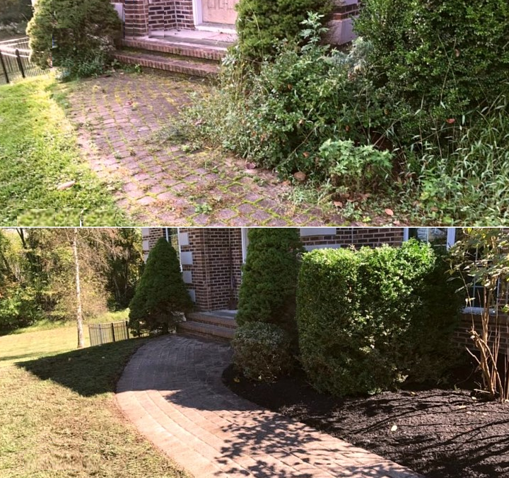 Landscape Repair Restoration